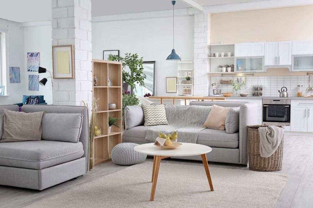 louer en meublé professionnel ou non professionnel